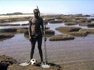 Film Du désert à l'océan