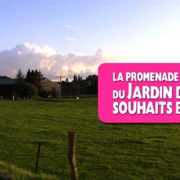 La Promenade du Jardin des Souhaits Bricolés, le film